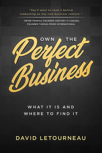 Own the Perfect Business cover