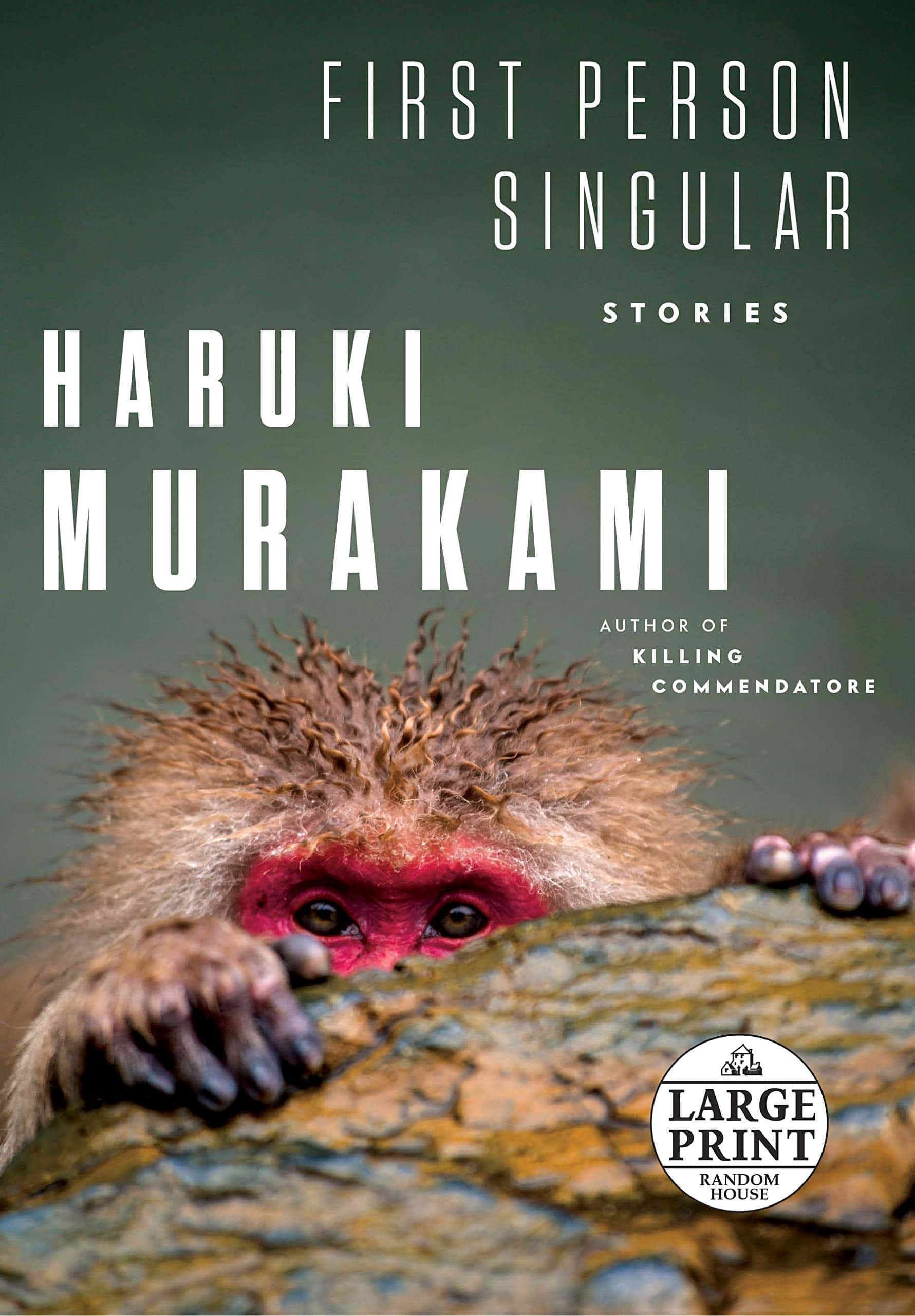 photo-based book cover example as a 2021 trend
